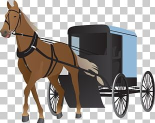 Horse And Buggy Horse Pulling Force PNG