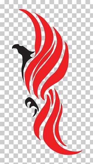 Logo Graphic Design Photography Phoenix PNG