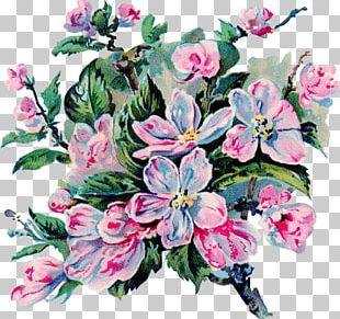 Floral Design Cut Flowers Flower Bouquet Bokmärke PNG