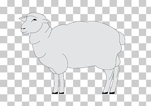 Sheep Goat Cattle Horse PNG