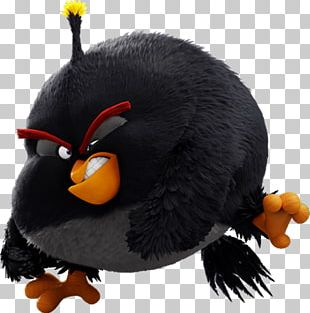 Angry Birds Go! Angry Birds Star Wars II Angry Birds Action! Angry Birds POP! PNG
