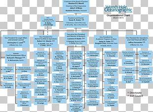 Organizational Chart Non-profit Organisation Organizational Structure Business PNG