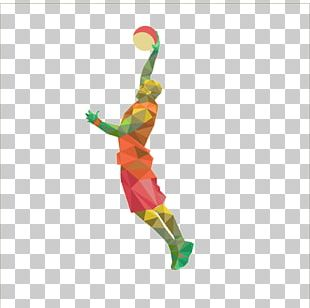 Team Sport Basketball Low Poly Sporting Goods PNG