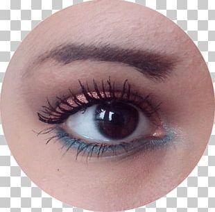 Eyelash Extensions Eye Shadow Iris Close-up PNG
