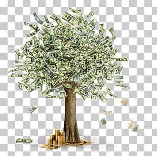 Business Information Moneymaker PNG