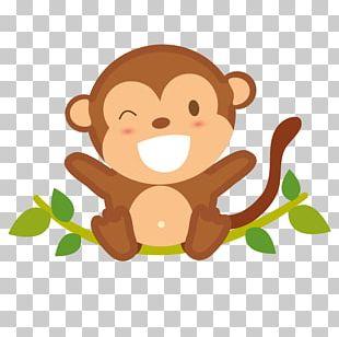 Cartoon Monkey Drawing PNG