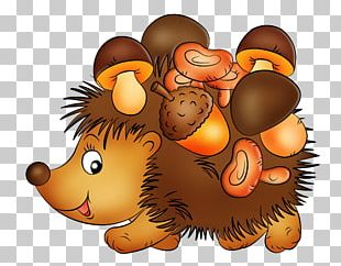 European Hedgehog Hydnum Repandum Four-toed Hedgehog PNG