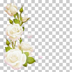 Floral Design Garden Roses Flower Embroidery Decorative Arts PNG