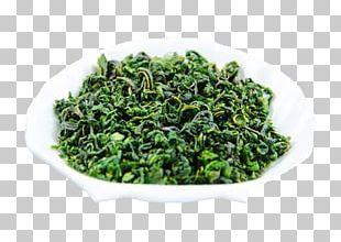 Tea Mulberry Lo Mai Gai Mxfbre Chenpi PNG