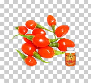 Tomato Peppers Bell Pepper Chili Pepper Goji PNG
