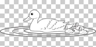 Baby Duckling Cygnini Coloring Book Drawing PNG