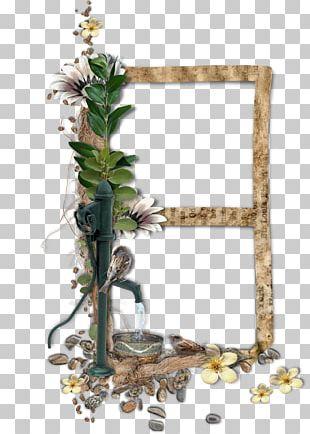 Window Bird Floral Design PNG