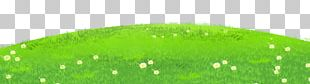 Leaf Clipart Grass PNG