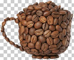 Arabica Coffee Tea Robusta Coffee Indian Filter Coffee PNG