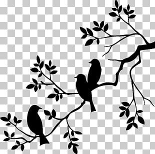 Wall Decal Sticker Branch PNG