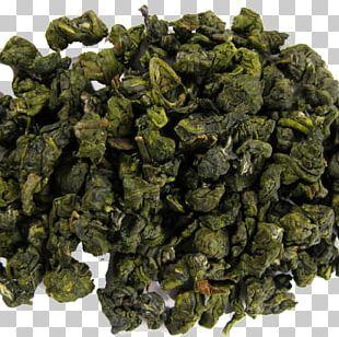 Oolong Green Tea Jin Xuan Tea White Tea PNG