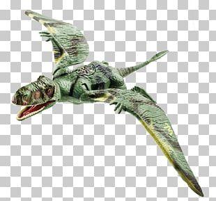 Dimorphodon Jurassic Park Toy Dilophosaurus Dinosaur PNG