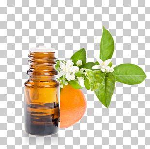 Petitgrain Essential Oil Orange Blossom Herbalism PNG