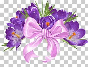 Saffron Flower Png Images Saffron Flower Clipart Free Download