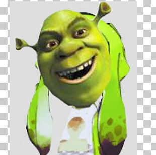 Shrek The Musical Donkey Lord Farquaad Princess Fiona PNG