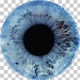 Eye Color Light Iris Human Eye PNG