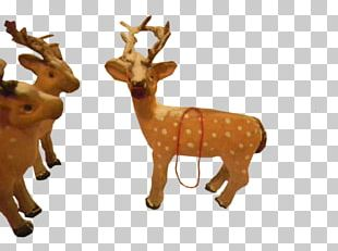 Reindeer Antler Figurine Terrestrial Animal PNG