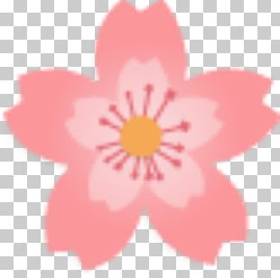 National Cherry Blossom Festival Floral Design PNG