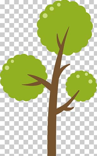 Green Tree Diagram PNG