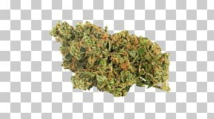 Sour Diesel Kush Cannabis Northern Lights Leafly PNG