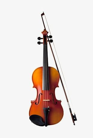 Musical Instruments Violin PNG