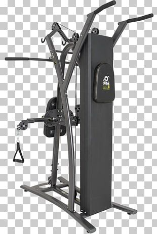 Functional Training Fitness Centre Exercise Orbit Physical Fitness PNG
