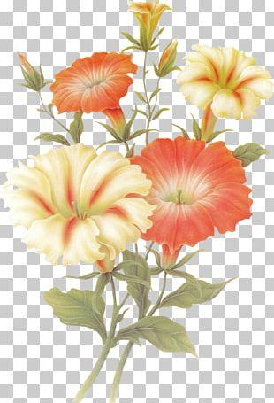 Orkut Floral Design Flower Love Spring PNG