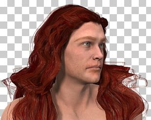 Red Hair Hair Coloring Capelli PNG