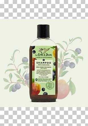 Shampoo Capelli Dandruff Hair Cosmetics PNG