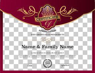 Academic Certificate Public Key Certificate PNG