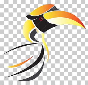 Desktop Toucan Directory Mobile Phones PNG