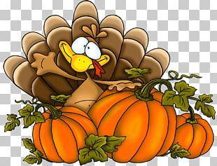 Thanksgiving Pumpkins Turkey PNG