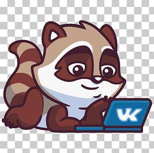 Raccoons VKontakte Sticker Telegram PNG