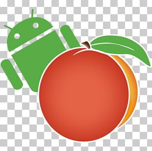Samsung Galaxy Note II IPhone Android Rooting Kingo Root PNG