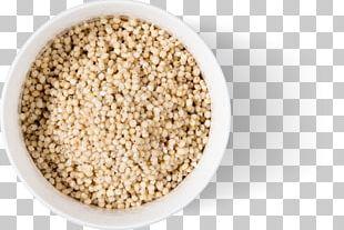 Cereal Broom-corn Grain Food Gluten-free Diet PNG
