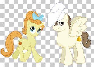 Pound Cake Pony Pinkie Pie Rainbow Dash PNG