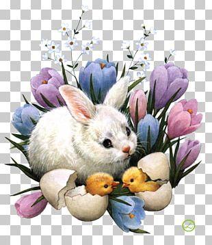 Easter Bunny Desktop Easter Egg Egg Hunt PNG