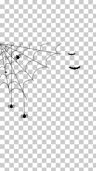 Spider Web Black And White Halloween PNG