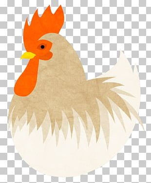 Rooster Chicken Meat PNG