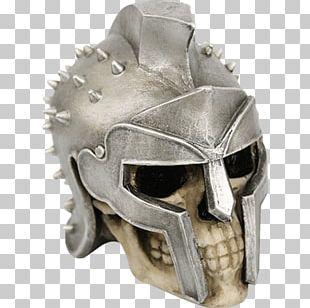Skull Maximus Human Skeleton Bone PNG
