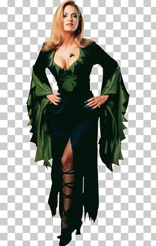 Halloween Costume Costume Party Woman PNG
