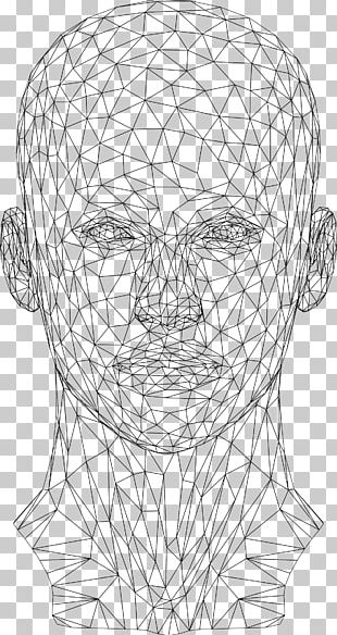 Website Wireframe Wire-frame Model Human Head PNG