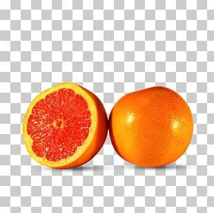 Tangerine Mandarin Orange Clementine Tangelo Grapefruit PNG
