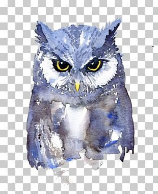 Owl Watercolor Painting Art Painting Animals In Watercolor PNG