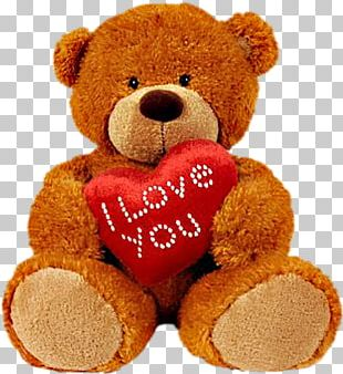 Teddy Bear Stuffed Animals & Cuddly Toys Doll PNG